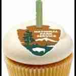 NPS birthday cupcake